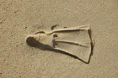 飞翅打印沙子游泳 库存照片