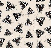 飞蛾蝴蝶图案传染媒介 向量例证