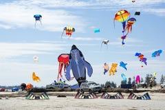 飞行各种各样的图风筝在阿德莱德国际K 库存图片