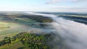 飞行在与薄雾的landcape上 股票视频