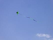 飞行在世纪公园里面的一只风筝 免版税库存图片