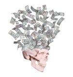 飞行在头骨外面的美元 免版税库存照片