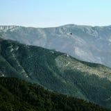 飞行在小山的乌鸦 免版税库存照片