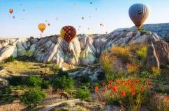 飞行在岩石风景的热空气气球在有花和hourses的卡帕多细亚土耳其 库存照片