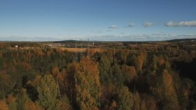 飞行在往传输塔和领域的秋天森林 股票视频