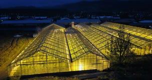 飞行在有光的温室的直升机里面在夜 庭院的鸟瞰图 领域的农业农场 股票视频