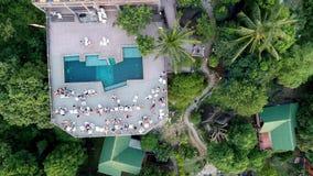 飞行在有棕榈树的美丽的豪华的绿色密林上 股票录像