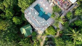 飞行在有棕榈树的美丽的豪华的绿色密林上 影视素材