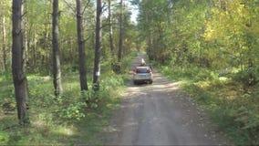 飞行在汽车在森林quadcopter跟随在自然的吉普在越野吉普森林航测  影视素材