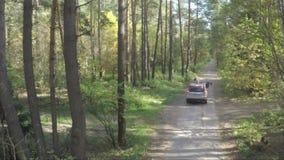 飞行在汽车在森林quadcopter跟随在自然的吉普在越野吉普森林航测  股票录像
