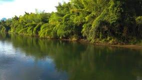 飞行在河和特写镜头美丽的树 影视素材
