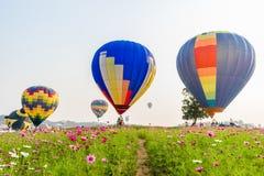 飞行在波斯菊花的五颜六色的热气球 免版税库存图片