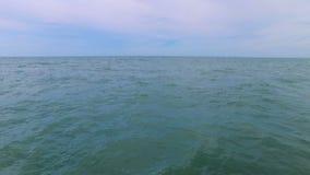 飞行在海岸 影视素材