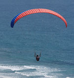 飞行在海浪 免版税库存照片