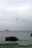 飞行在海的一只大鸟 库存图片