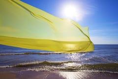 飞行在海的黄色组织 免版税图库摄影