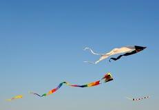 飞行在海滩的风筝 库存图片