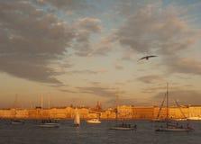 飞行在涅瓦河和航行游艇的海鸥 免版税库存照片