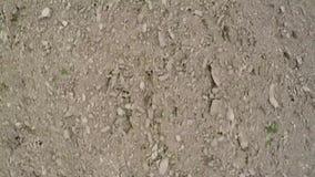 飞行在耕种领域 完全接地 干燥陆运 影视素材