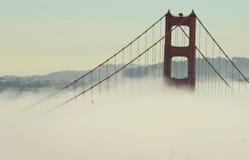 飞行在金门大桥的鹰 免版税库存照片