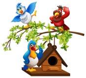 飞行在鸟舍附近的三只鹦鹉 库存例证