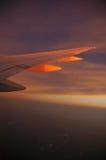 飞行晚上 库存照片
