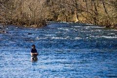 飞行渔夫捉住鳟鱼o罗阿诺克河的特林,弗吉尼亚,美国 库存图片