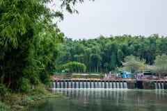 飞行瀑布在竹海域竹森林里  库存图片