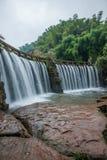 飞行瀑布在竹海域竹森林里  库存照片