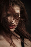 飞行灰色头发夫人年轻人的有吸引力的背景梳子 库存图片
