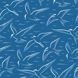 飞行燕鸥无缝的瓦片 免版税库存图片