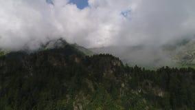 飞行的寄生虫通过在一美丽的西伯利亚taiga的一座云彩山 股票录像