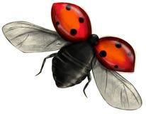 飞行的查出的瓢虫 免版税库存图片