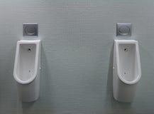 飞行空白被绘的洗手间二的尿壶 免版税库存图片