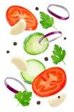 飞行蕃茄用黄瓜、葱、大蒜和荷兰芹 免版税库存照片