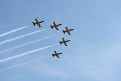 飞行表演 航空L-39 Albatros 库存图片