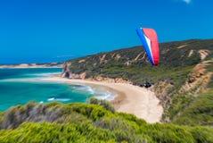 飞行象草的小山的澳大利亚滑翔伞在伟大的海洋 免版税库存图片