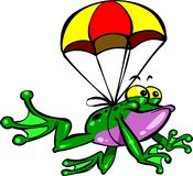 飞行青蛙 库存图片