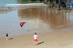 飞行风筝的孩子。 免版税库存照片
