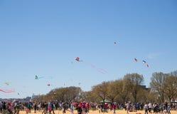 飞行风筝的成人和孩子大人群在全国购物中心的风筝节日 免版税库存照片