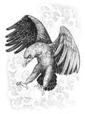飞行,与种族装饰品的攻击的老鹰 皇族释放例证