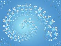 飞行蝴蝶螺旋在蓝色的 免版税图库摄影