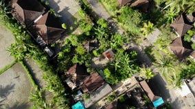 飞行HD空中寄生虫英尺长度在米的在Ubud地区,巴厘岛热带海岛调遣  股票录像