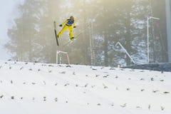 飞行Vikersund (挪威) 2015年2月14日的WC滑雪 库存照片