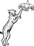 飞跃在松鸡以后的美洲野猫 向量例证