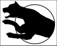飞跃在白色背景的豹子 免版税图库摄影