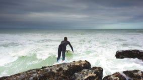 飞跃对海浪 库存照片