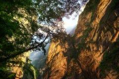 飞跃峡谷丽江中国的老虎 库存照片
