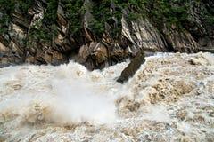 飞跃峡谷的老虎在中国 次幂水 库存照片