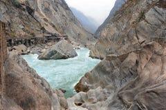 飞跃峡谷的老虎在中国 库存图片